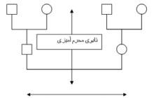 نقش تابوی بیان احساسات در ساختار خانواده ایرانی :: رضا کاظم زاده